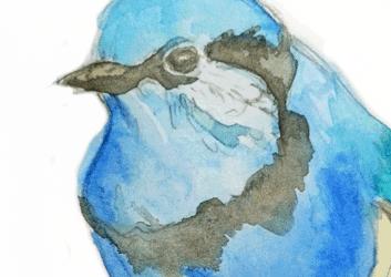 sm_watercolor_blurbird